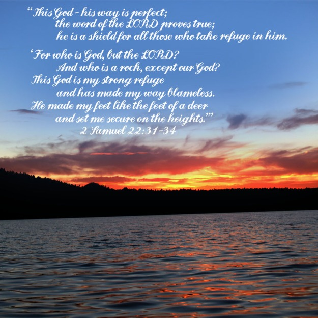 2 Samuel 22:31-34