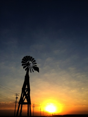 Sunrise on the calf ranch